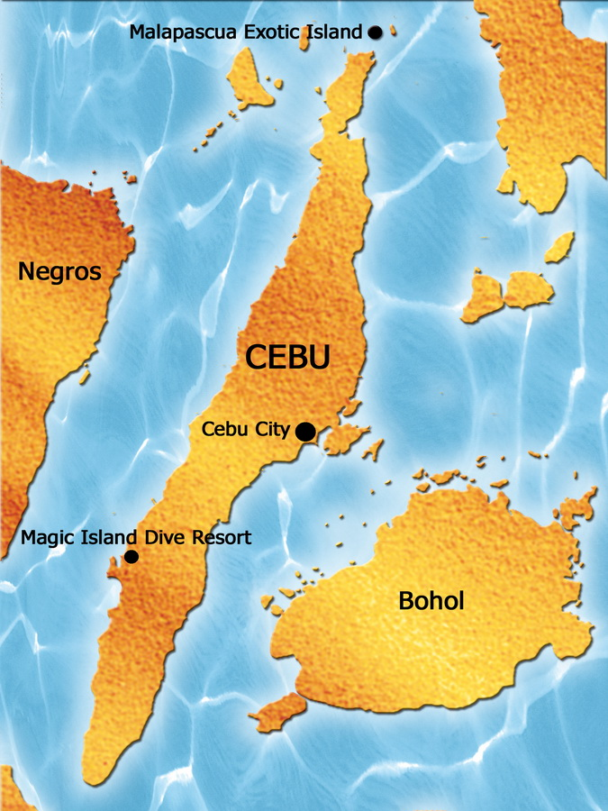 Forex cargo cebu telephone number