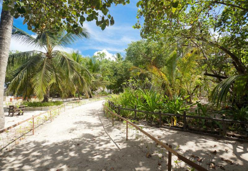 Bathala malediven werner lau diving world duikvakanties - Centraal eiland om te eten ...
