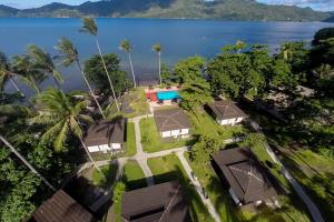 Hairball Resort & Dive into Lembeh
