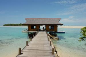 Nabucco's Island Resort & Extra Divers