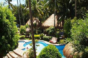 Pura Vida Beach & Dive Resort - Sea Explorers
