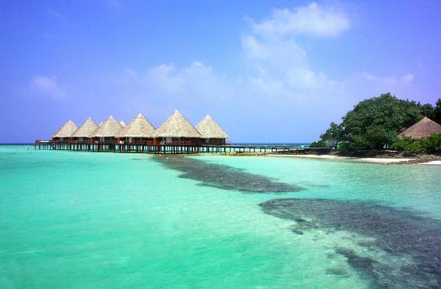 Velidhu island resort diving world duikvakanties - Centraal eiland om te eten ...